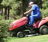 Péči o zeleň provádějí pečlivě vybraní, prověření a kvalifikovanípracovníci