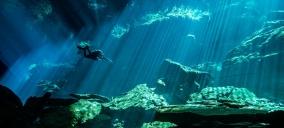 IANTD - Cavern - Diver
